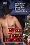 Wild Texas Christmas