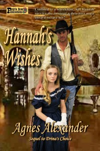 Hannah's Wishes