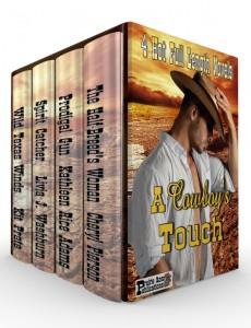 A Cowboy's Touch Box 2